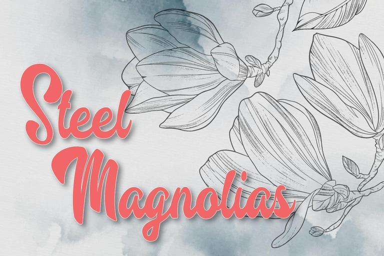 Photo of Steel Magnolias