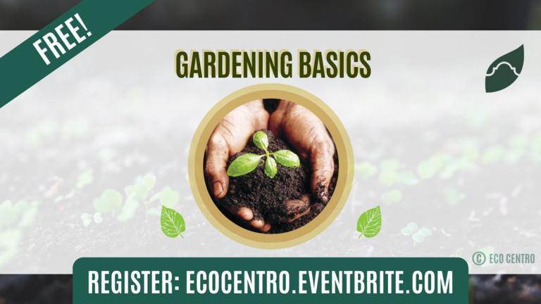 GardeningBasics