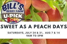 sweet-as-peach-bills