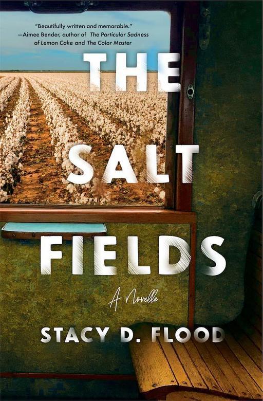 The Salt Fields with Stacy D. Flood